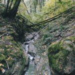 Šančių upelis
